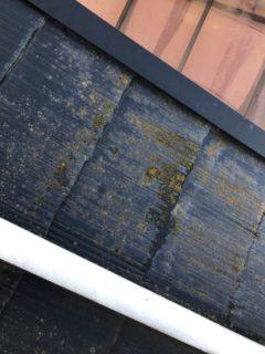 大津市H様邸の屋根工事始まりました。